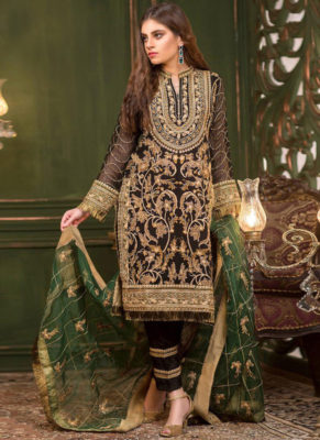 Dial N Fashion Off White Heavy Embroidred Designer Georgette Pakistani Style Suit