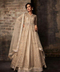 Dial N Fashion Beige  Heavy Designer Bridal Wear Butterfly Net Suit